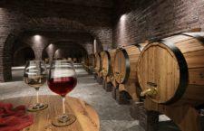 Виноделие – хобби или бизнес