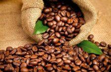 Услуги компании coffeemegusta.ru