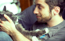 В кафе «Мурка» в Харькове можно ходить с кошками!
